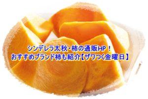 シンデレラ太秋・柿の通販HP!おすすめブランド柿も紹介【ザワつく金曜日】